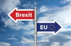 INTA agrees five Brexit principles, including minimum costs