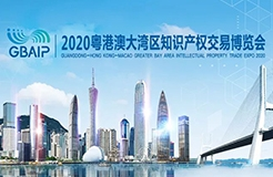 2020 Guangdong-Hong Kong-Macao Greater Bay Area Intellectual Property Exchange Expo wonderful moments review